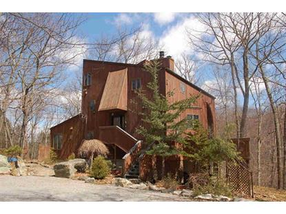 50 ESSELBORNE RD Philipstown, NY MLS# 336926