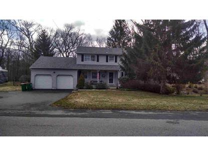 20 TIMBERLINE DR Poughkeepsie, NY MLS# 338087