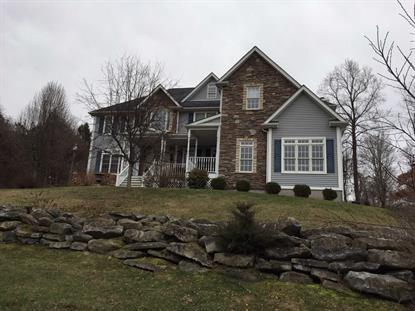 22 WINTER PARK DR East Fishkill, NY MLS# 344862
