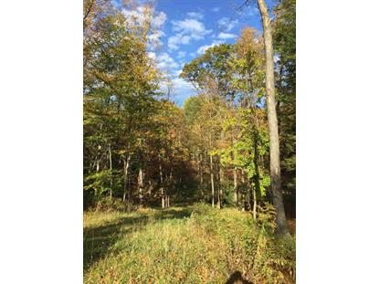 QUARRY HILL DR Millerton, NY MLS# 345243