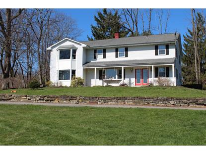 171 BLUE HILL East Fishkill, NY MLS# 345813