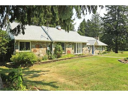 431 E MOUNTAIN RD NORTH Philipstown, NY MLS# 350194