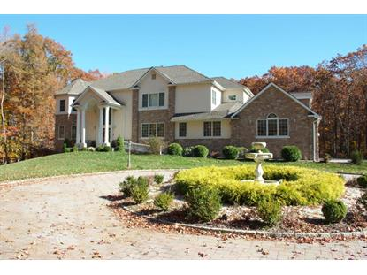 207 Jackson Mills Road Freehold, NJ MLS# 21541762