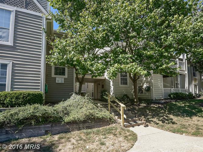 7660 WILLOW POINT DR #7660, Falls Church, VA 22042