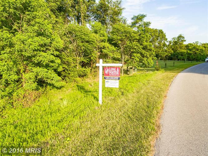 8313 PROPHET ACRES RD, Fairplay, MD 21733