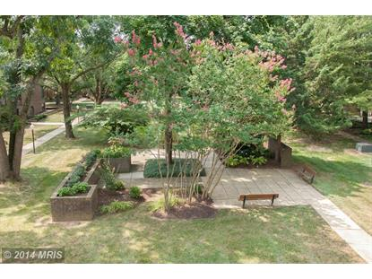 21 SILVERWOOD CIR #10 Annapolis, MD MLS# AA8418164