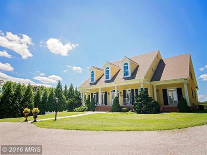 20022 GORE MILL RD Freeland, MD MLS# BC9607080