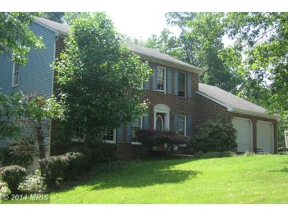 234 ANTIETAM DR Falling Waters, WV MLS# BE8366796