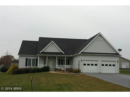 540 MICHIGAN Falling Waters, WV MLS# BE8502751