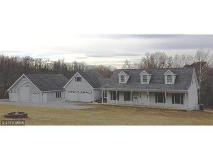 56 REGAL DR Falling Waters, WV MLS# BE8576247
