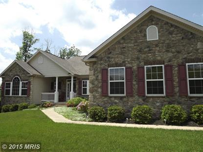 49 GLORY LN Falling Waters, WV MLS# BE8619603