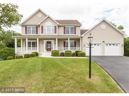 43 MONONGAHELA CIR Falling Waters, WV MLS# BE8666247