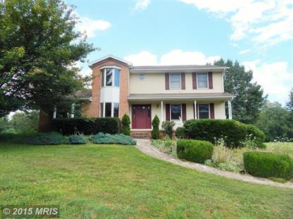 895 STAYMAN DR Falling Waters, WV MLS# BE8696454