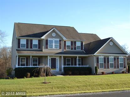 260 DREWERY LN Falling Waters, WV MLS# BE9526344