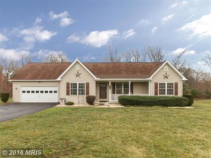197 MICHIGAN DR Falling Waters, WV MLS# BE9597749