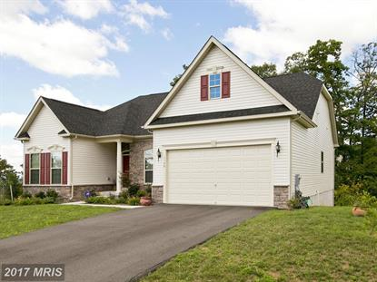 1128 Riparian DR Falling Waters, WV MLS# BE9749767