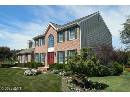 11 STEEPLE CHASE LN North East, MD MLS# CC8444164