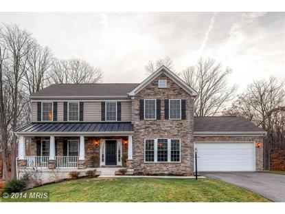 212 BETHEL SPRINGS DR North East, MD MLS# CC8515810