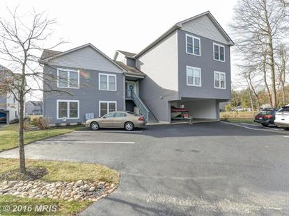 168 NORTH EAST ISLES DR North East, MD MLS# CC9558318