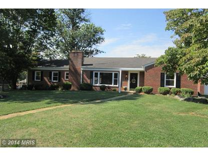 415 TREADWELL ST Berryville, VA MLS# CL8421789