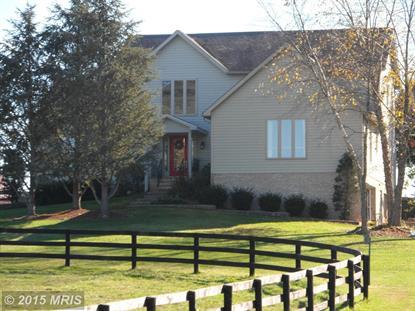 333 SPRING HOUSE LN Berryville, VA MLS# CL8677533