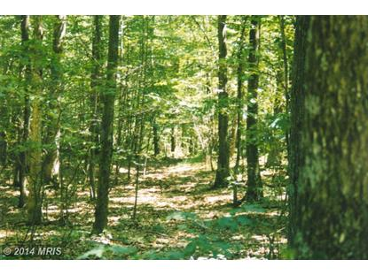 STUMPY LN Fort Loudon, PA MLS# FL8293991