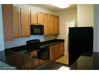 6185 WILLOW PL #304 Bealeton, VA MLS# FQ8333698