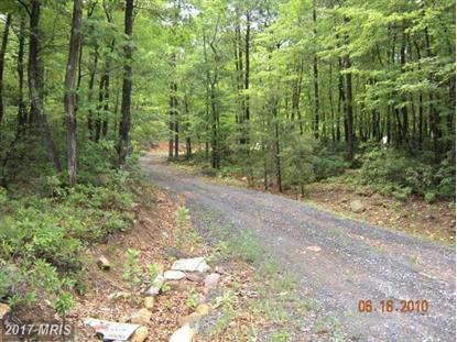 LOT 13 GREAT MOUNTAIN LN Winchester, VA MLS# FV7723402