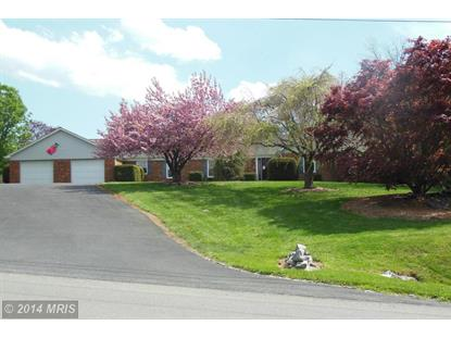 216 HOPEWELL RD Clear Brook, VA MLS# FV8280598