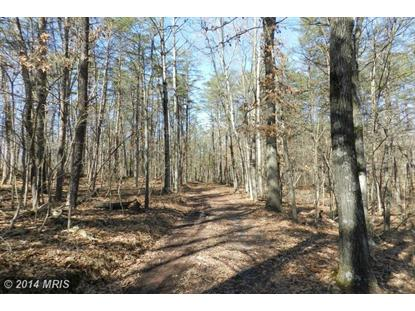 LOT 16 OF HICKS SUBDIVISION Winchester, VA MLS# FV8306233
