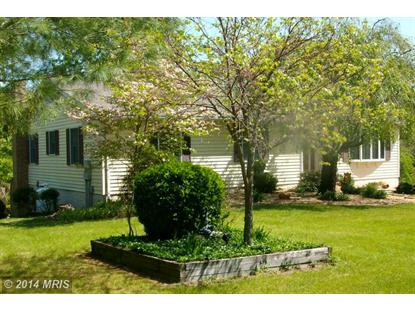 163 MOUNTAIN VIEW RD Winchester, VA MLS# FV8326202