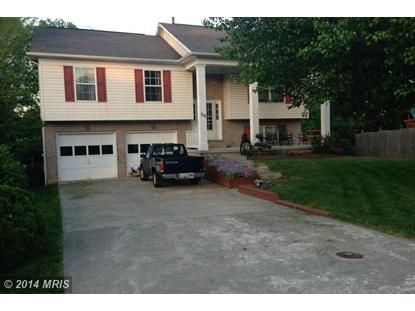 110 ALLEGHANY CT Stephens City, VA MLS# FV8347203