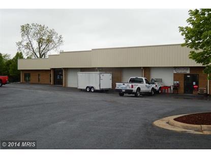 156 WINDY HILL LN Winchester, VA 22602 MLS# FV8388853