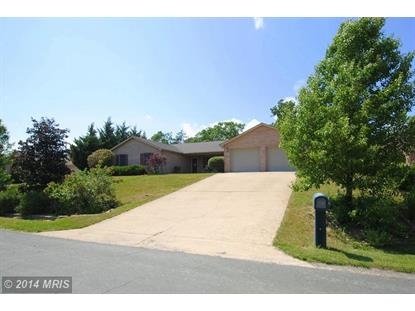 239 BRANDYLION DR Stephens City, VA MLS# FV8394219