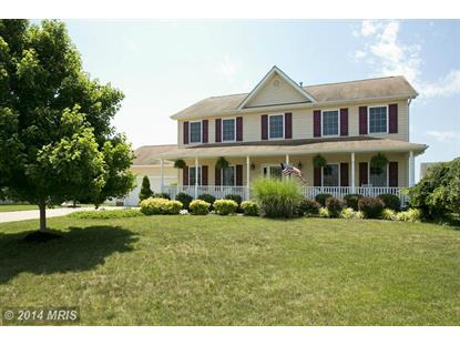 113 CORRAL DR Stephens City, VA MLS# FV8399912