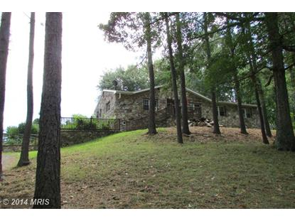1227 CANTERBURG RD Stephens City, VA MLS# FV8446787
