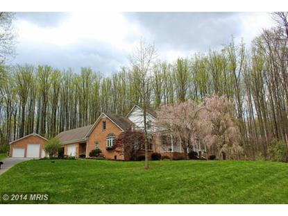 365 TYLER DR Clear Brook, VA MLS# FV8471863