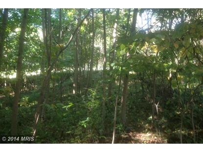 FOREST RIDGE RD Winchester, VA MLS# FV8474985