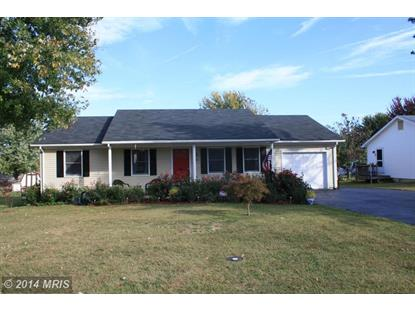 230 NIGHTINGALE AVE Stephens City, VA MLS# FV8475016