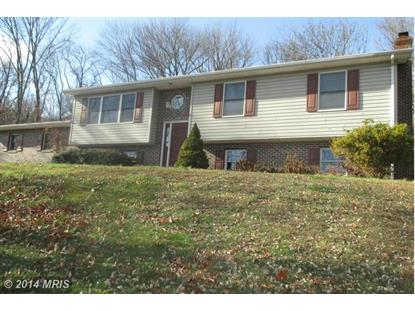 2800 BACK MOUNTAIN RD Winchester, VA MLS# FV8510699