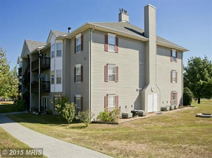113 TIMBERLAKE TER #4 Stephens City, VA MLS# FV8748344