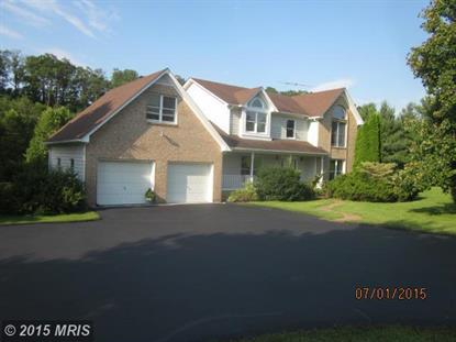 519 FRASHER DR Clear Brook, VA MLS# FV8752847