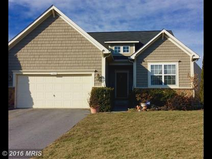 103 IVY HILL CT Stephens City, VA MLS# FV9560467