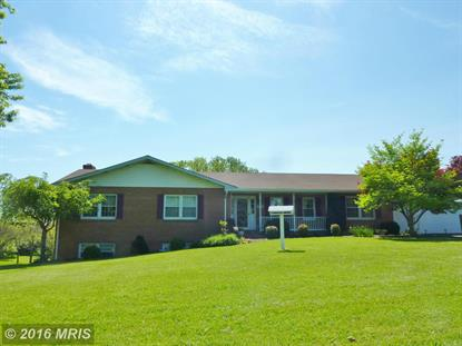 2906 MARTINSBURG PIKE Stephenson, VA MLS# FV9649807