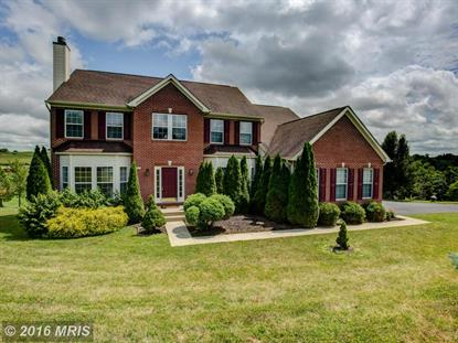 137 BRONZE MANOR CT Winchester, VA MLS# FV9669238