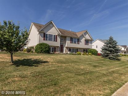 101 JUTLAND CT Stephens City, VA MLS# FV9686487