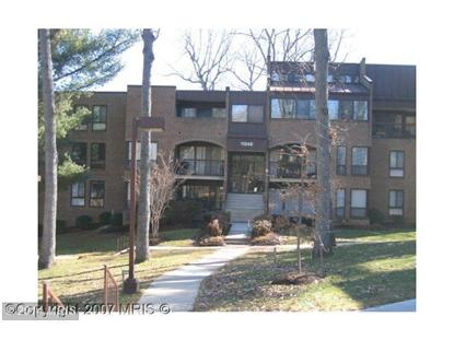 11248 CHESTNUT GROVE SQ #28