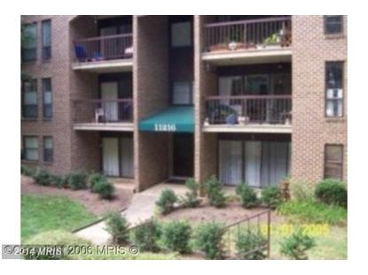 11216 CHESTNUT GROVE SQ #120