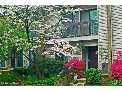 11613 WINDBLUFF CT #9B1 Reston, VA MLS# FX8412042