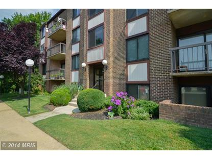 9730 KINGSBRIDGE DR #304, Fairfax, VA
